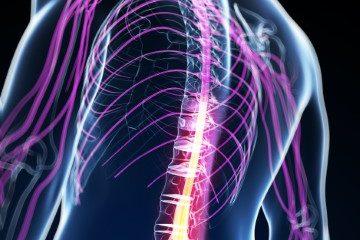 postura cervical e dor de cabeça