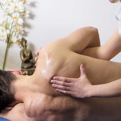 fisioterapia fisio terapia manual mobilização